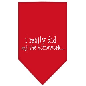 I really did eat the Homework Screen Print Bandana Red Large